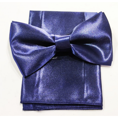 Bow tie with Clutch and brooch jacket microfantasia